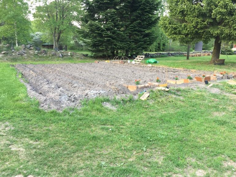 Meie aiamaa lapike