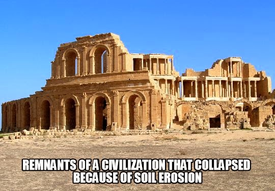 remnantsofacollapsedcivilization